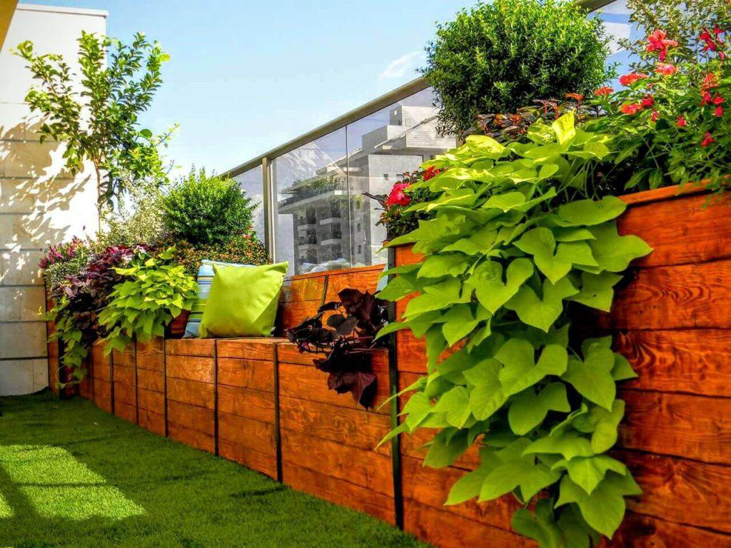 מרפסות מעוצבות באמצעות צמחייה