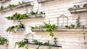 גינה תלויה על קיר אדניות תבלינים ופרחים