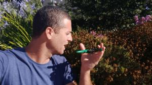איך גורמים לפרחים של החרצית לפרוח כל השנה