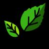 גידול צמחי מאכל ונוי