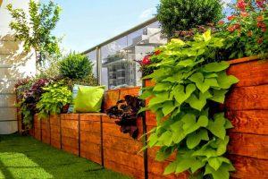 אדניות עץ בגינת גג