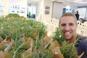 צמחי תבלין מתנה לעובדים סדנאות גינון
